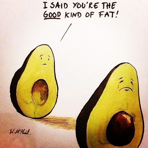 Avocados good fats